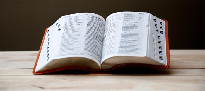 Профессия переводчик: сферы и преимущества